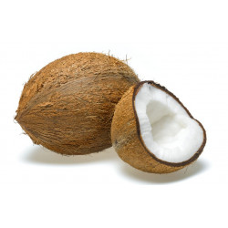 Coconut 1 Pcs
