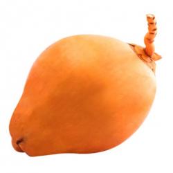King Coconut (Thambili)