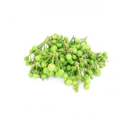 Thibbatu (Turkey Berry) 250g