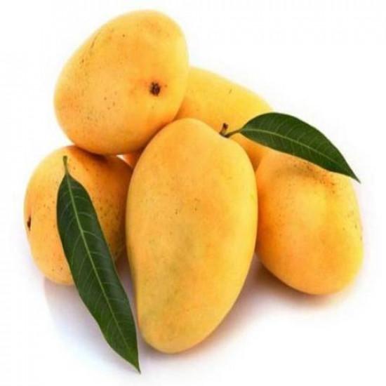 Mango TJC 500g